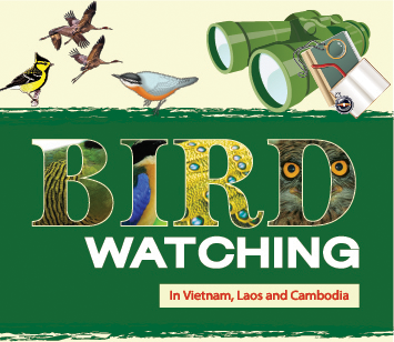 birdwatchingvietnam.net